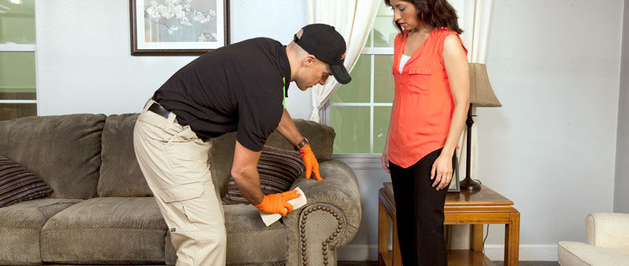 Southeast Grand Rapids, MI carpet upholstery cleaning