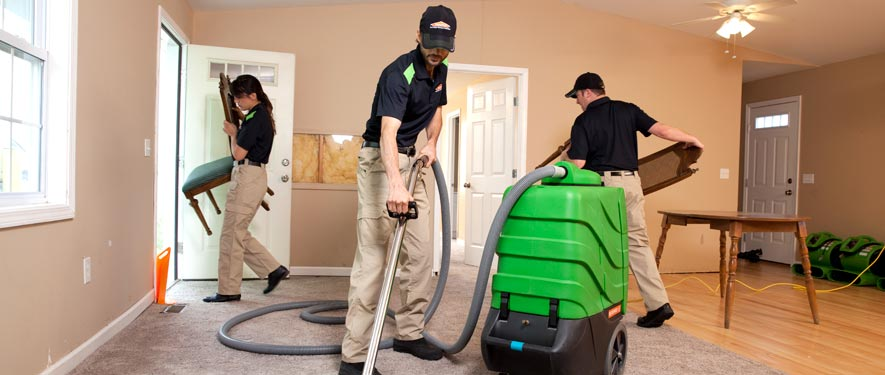 Southeast Grand Rapids, MI cleaning services